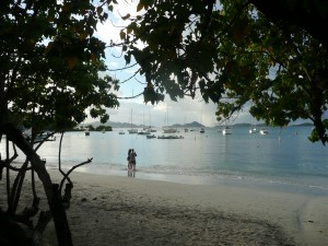 Picture of beach on St John, USVI